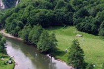 Se va alege praful de patrimoniul natural! ONG-urile de mediu cer ajutorul UE pentru a opri distrugerea ariilor protejate