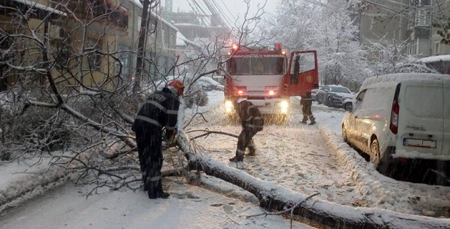 Caderile masive de zapada si viscolul au dus la doborarea mai multor arbori. Echipajele de salvatori raman mobilizate in continuare