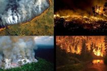 Padurea amazoniana, urgenta internationala! Imagini dramatice cu incendiul care distruge 20% din oxigenul Planetei