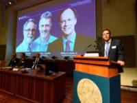 """Castigatorii premiului Nobel pentru Medicina 2019, anuntati la Stockholm. Cei trei cercetatori au descoperit""""modul in care celulele simt si se adapteaza la disponibilitatea oxigenului″"""
