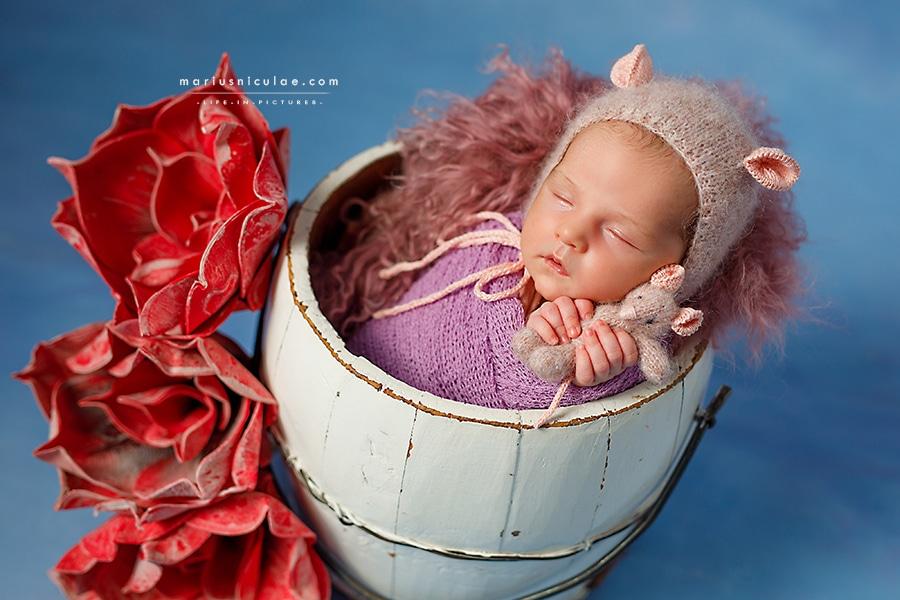 Sedinte foto pentru nou-nascuti - Cum poti gasi fotograful profesionist de care ai nevoie